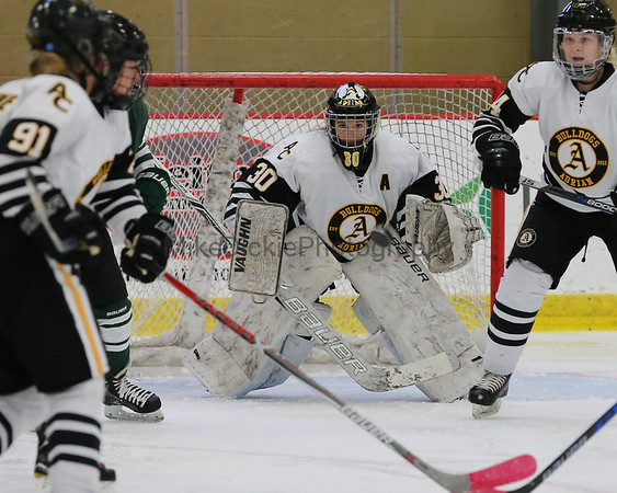 Adrian College vs MSU ACHA D1 women's hockey