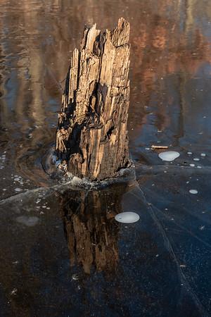 Black Ice Reflections @Beaver Pond Billerica