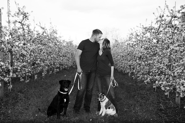 Spring Orchard Couple with Dogs in West Michigan - JE Koetsier Family Portraits