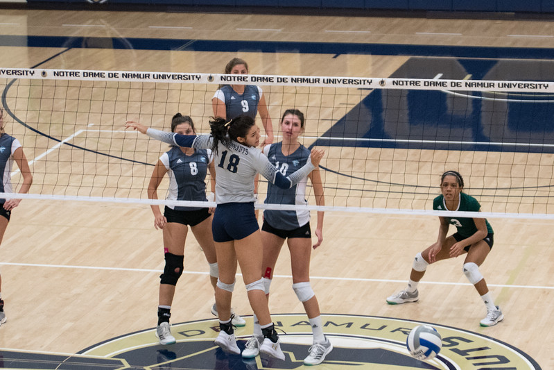 HPU Volleyball-92088.jpg