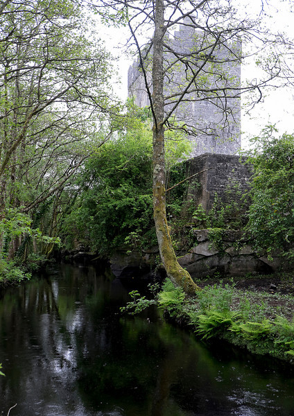 Just outside Oughterard is Aughnanure Castle. We found it on our own. A small, though deep, river ran right by it.