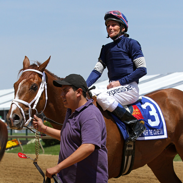 Jockey Mary Russ Tortora wins the Lady Legends for the Cure IV aboard Haywired at Pimlico Racecourse 5/17/13.