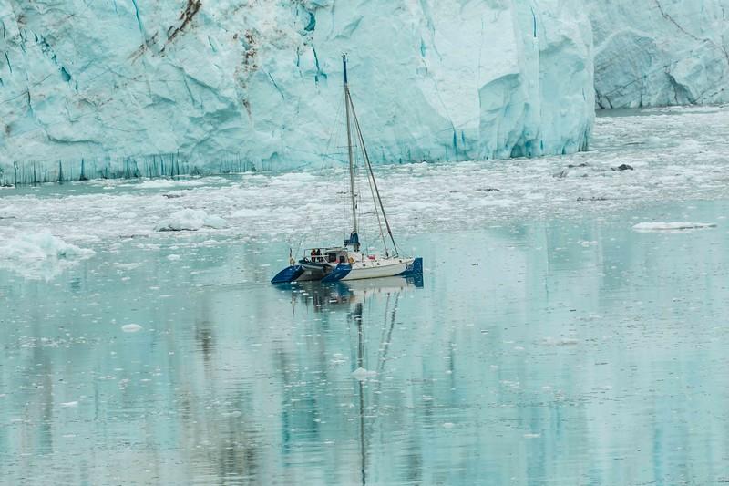 Glacier Bay 13.jpg