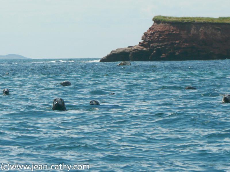 Maritimes_2007-IDM- (55 of 57)