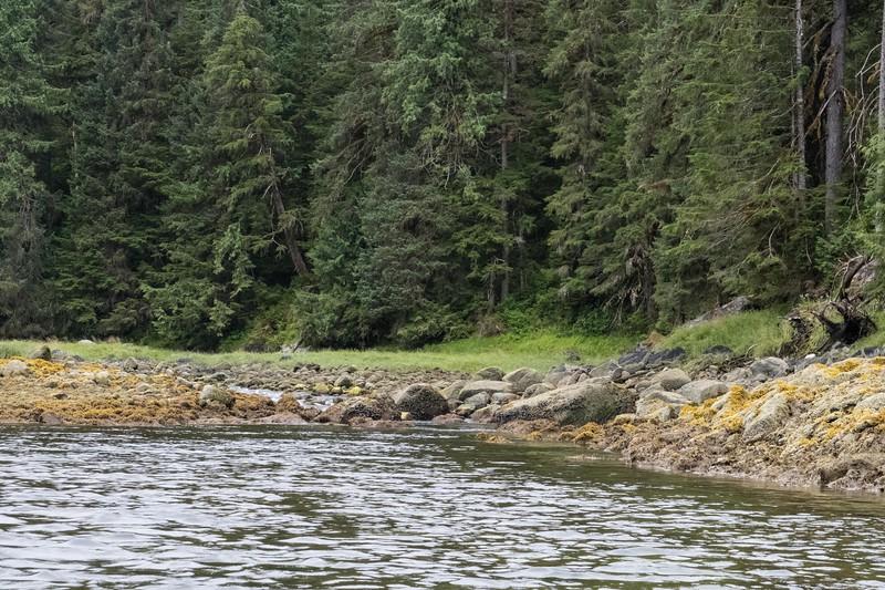 paddle-thurs-15.jpg