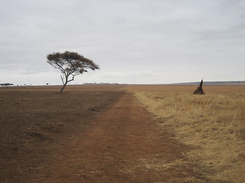 Tanzania14-3210.jpg