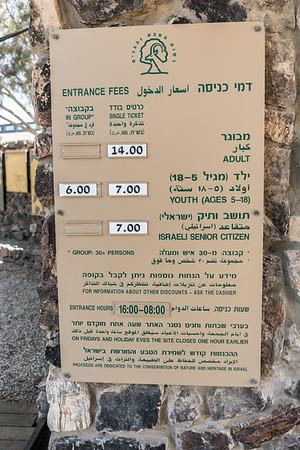 Tel Beer Sheba 2017