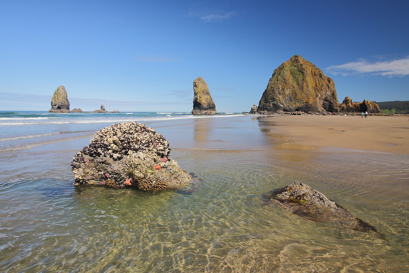 Cannon_Beach_2011_06.JPG
