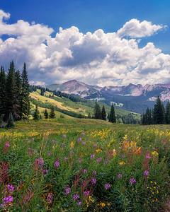 Field of Dreams, Crested Butte, Colorado