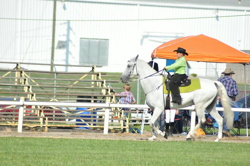 horseshow-sweetwater-0089.jpg