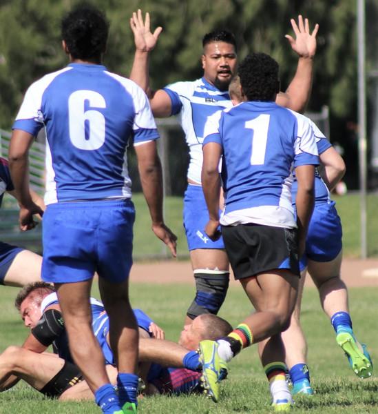 sharks-rugby7s-facebook-photos-1 (30).jpg