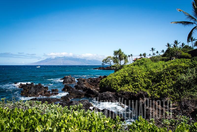 Maui2016-067.jpg