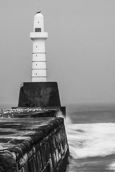 2014_10 Scotland-4.jpg
