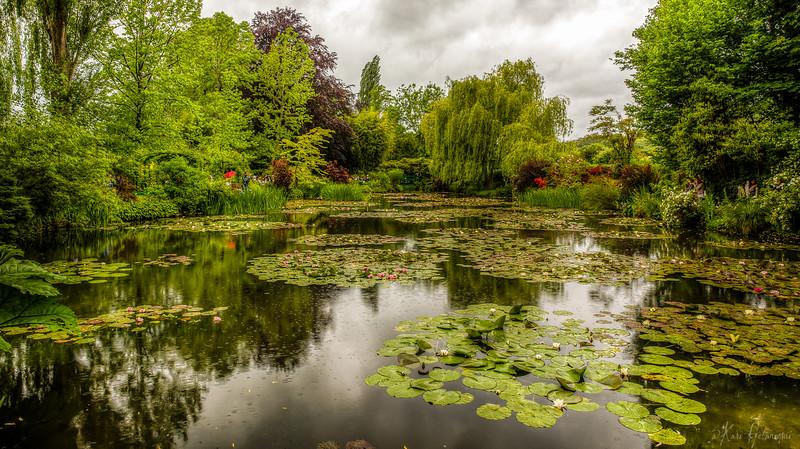 Monnet Garden_HDR.1.jpg