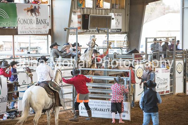 Ranch Bronc Riding