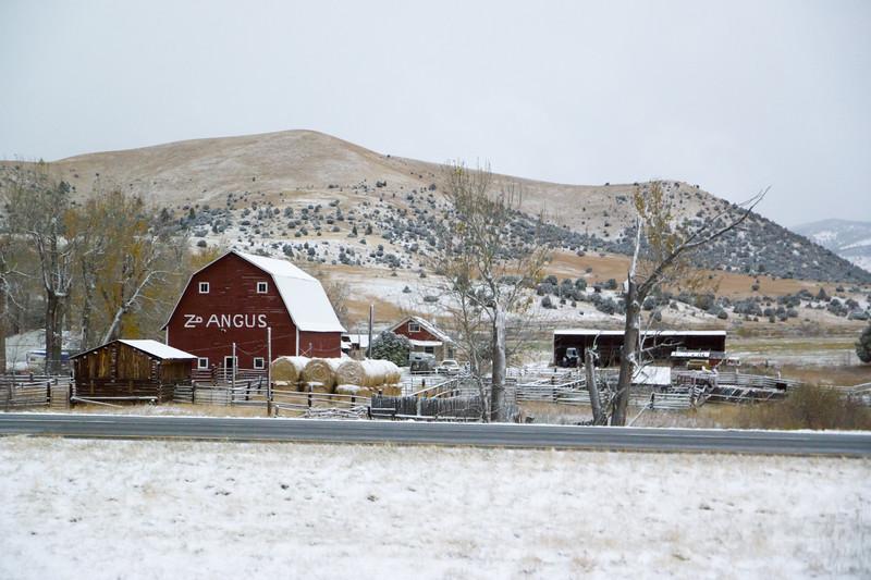 Montana Fall Barn
