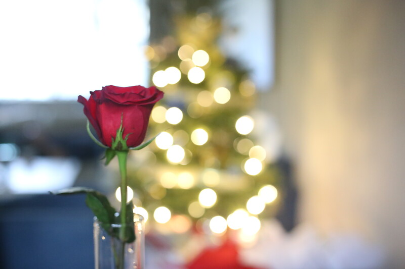 2019-12-22_ChristmasDecor-4462.JPG