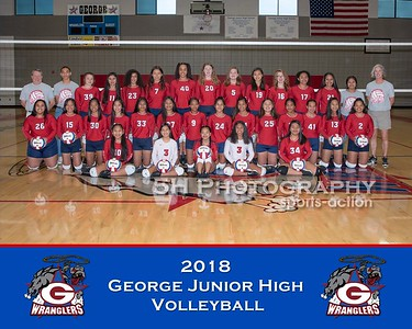 George Volleyball