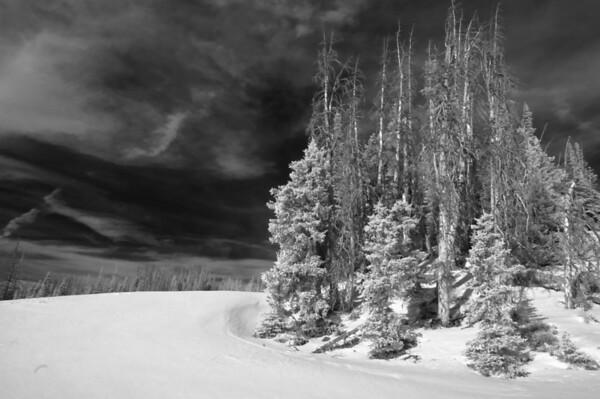 Cedar Breaks Dec 2009