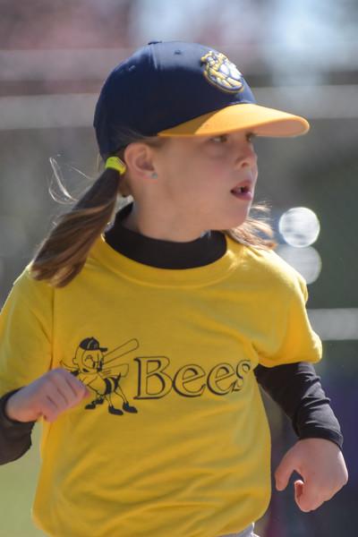 Bees-049.jpg