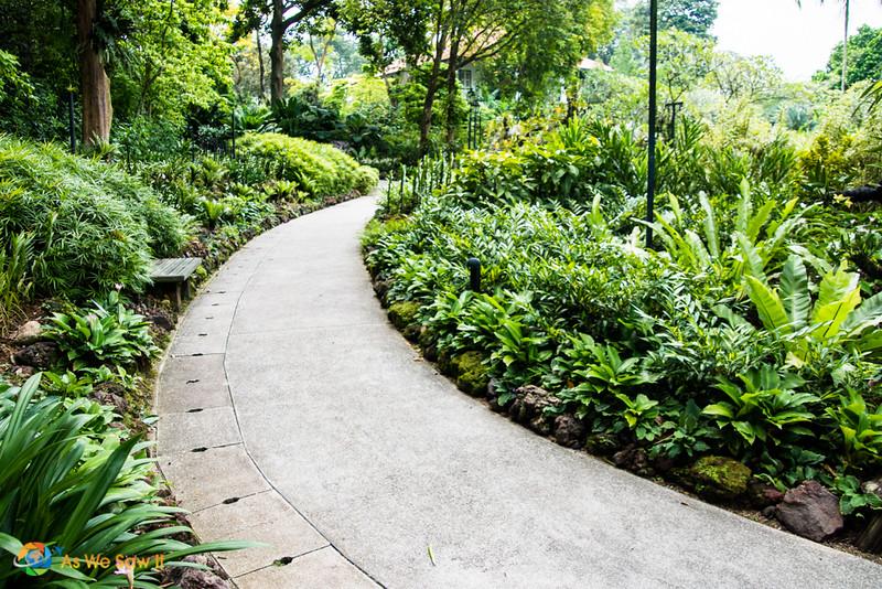Singapore-0417028.jpg