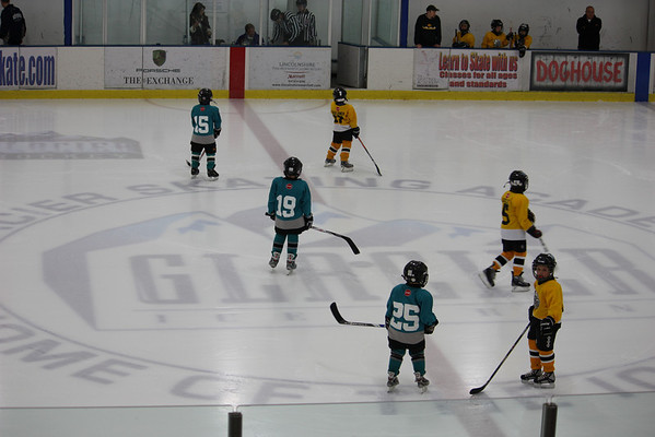 Championship Game vs Penguins
