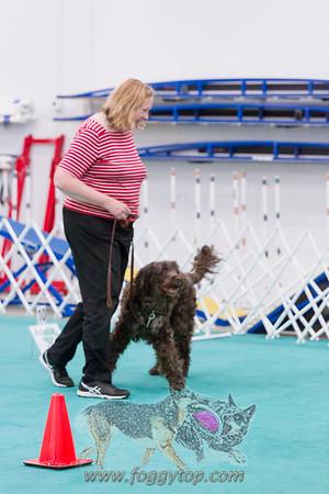 June 2017 Let's Speak Dog WCRL Trial