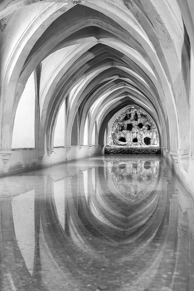 Bathing Reflections in Black & White