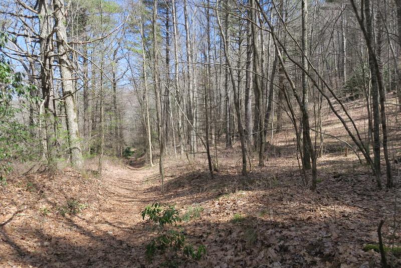 Devils Elbow Trail - 3,620'