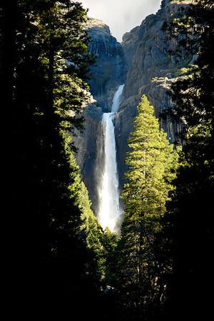 Yosemite - February 2006: Day 3