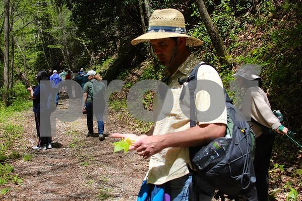Hikers' Jamboree at Rocky Fork - May 2015