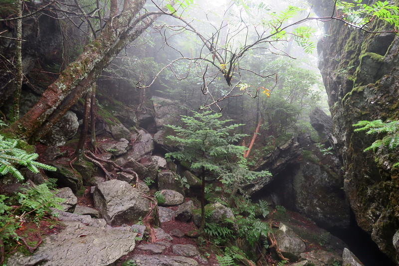 Underwood Trail -- 5,520'