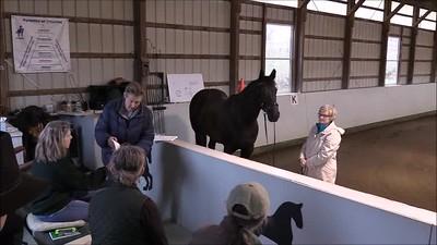 TSRC 2019-03-31 Wildfire Farm Video