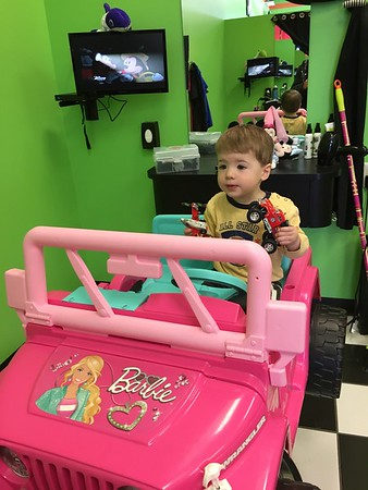 Hair Cut-Sharkey