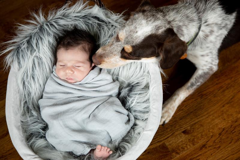 Jackson Newborn-75.jpg