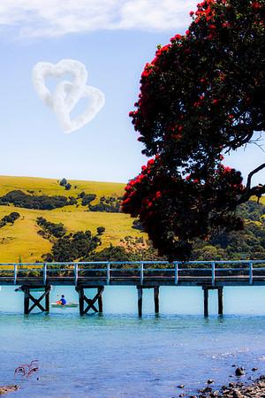 Akaroa NZ Cute Little Hidden Village