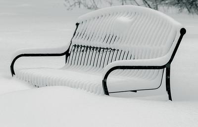 Winter Gallery