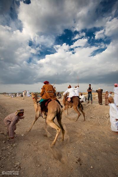 Camel Race  (48).jpg