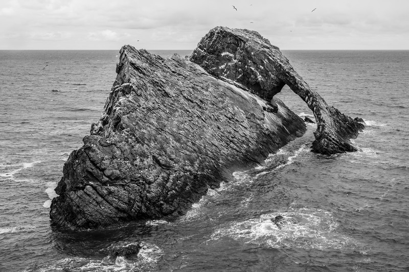 20190508 Bow Fiddle Rock 051.jpg