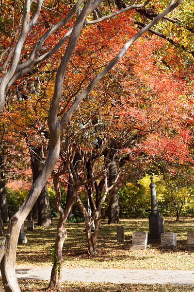 111913 Greenwood Cemetery