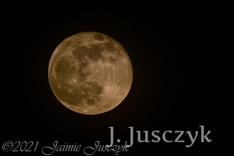 Jusczyk2021-7996-2.jpg