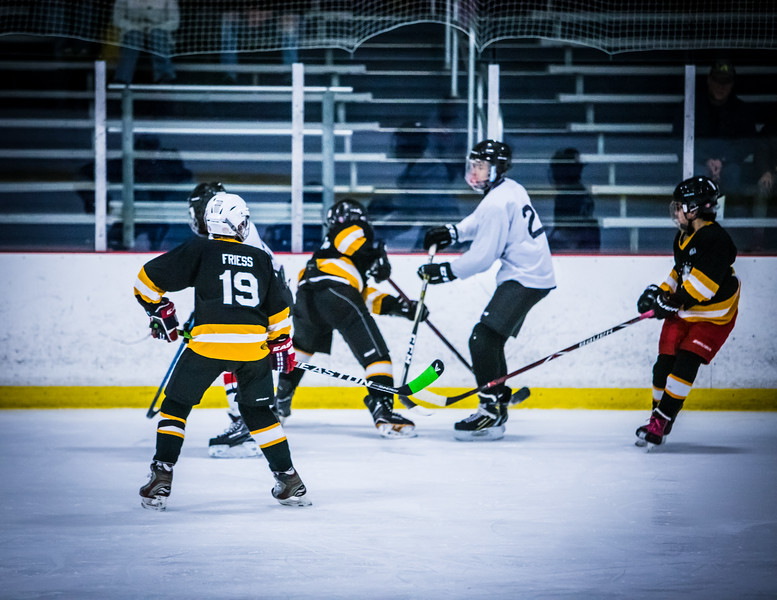 Bruins2-309.jpg