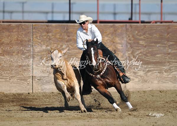 VCHA Derby May 4, 2013 (reining & cow work)