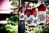 SAKU - Japan - Nippon - Japon