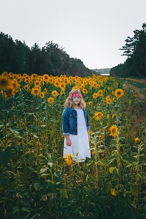 Sunflowers Lundin