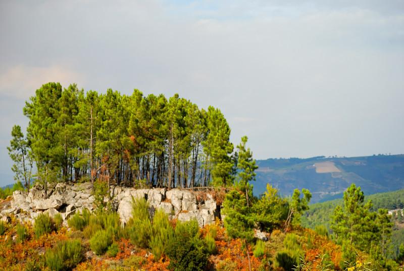 """Tarouca-Percurso """"Rota dos Monges de Cister""""- 20091004 -  7388.jpg"""