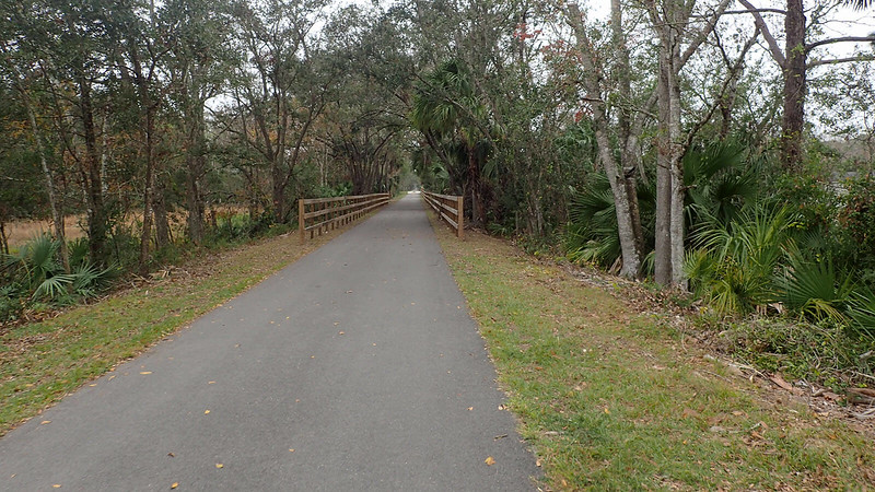 Paved path with fence and trees on both sides