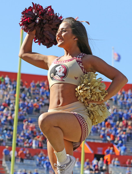 2017 FSU Cheerleaders