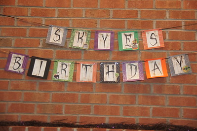 Skye's 7th Birthday Celebration