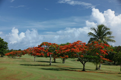 Saipan Country Club